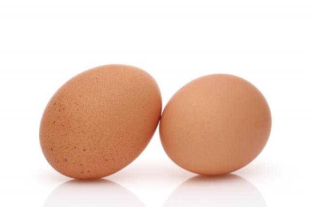 カモノハシは卵から生まれる