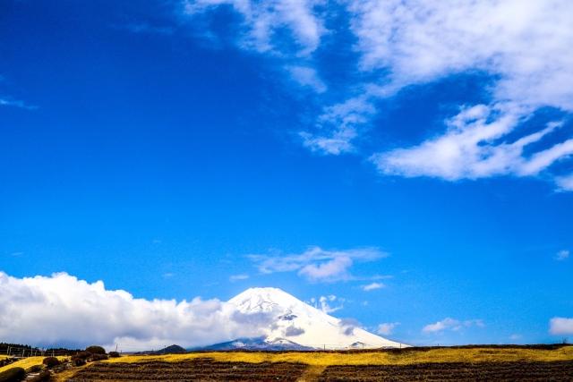 ジェレヌクが飼育されていた富士サファリパークがある富士山麓