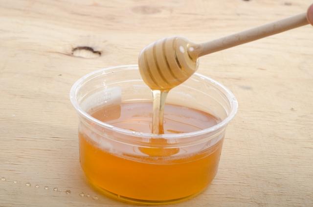 キンカジューはハチミツを好む