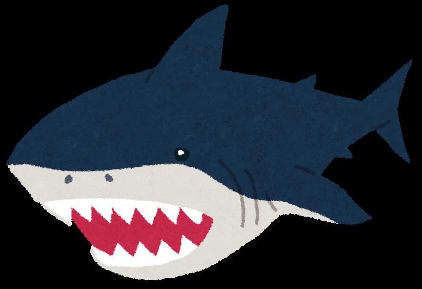 シャチが絶滅に追い込んだメガロドン