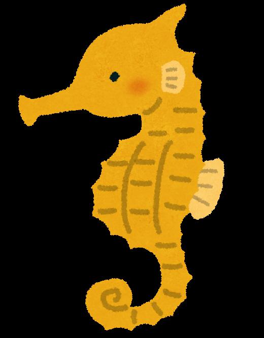 タツノオトシゴ